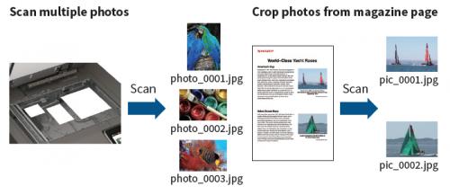 Image Crop